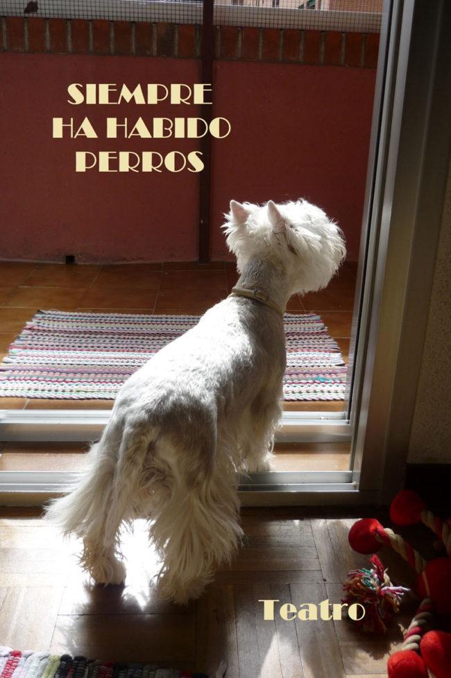 Teatro de perros